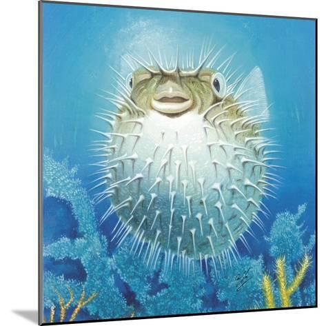 Puffer Fish-Durwood Coffey-Mounted Giclee Print