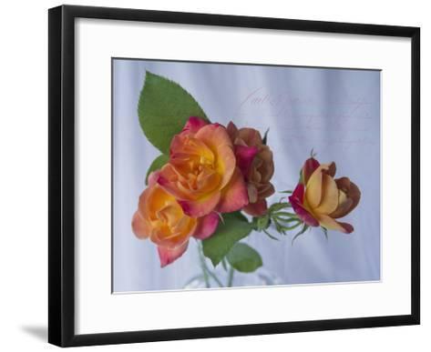 Peachy Rose-Bob Rouse-Framed Art Print