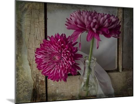 Mums by a Window-Bob Rouse-Mounted Giclee Print