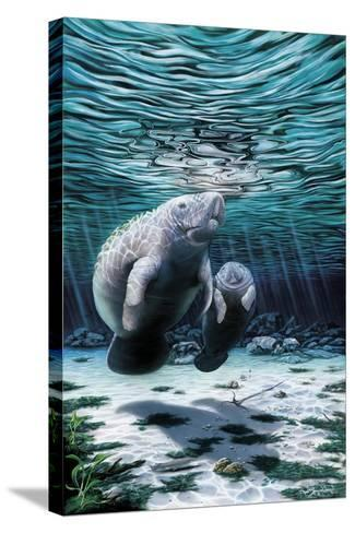 Mermaids of Crystal River-Dann Spider-Stretched Canvas Print