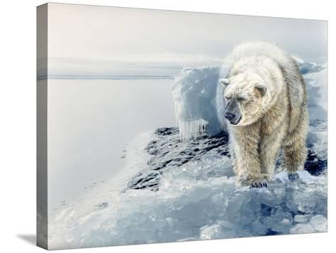 Polar Dawn-Gordon Semmens-Stretched Canvas Print