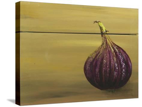 Red Onion on a Box-Gigi Begin-Stretched Canvas Print