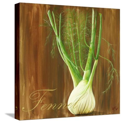 Fennel-Gigi Begin-Stretched Canvas Print
