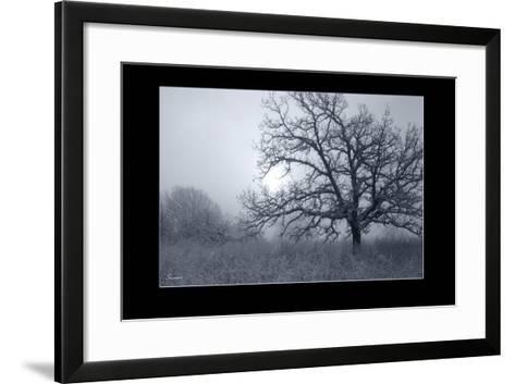 Silver Tone Buffalo River 1-Gordon Semmens-Framed Art Print