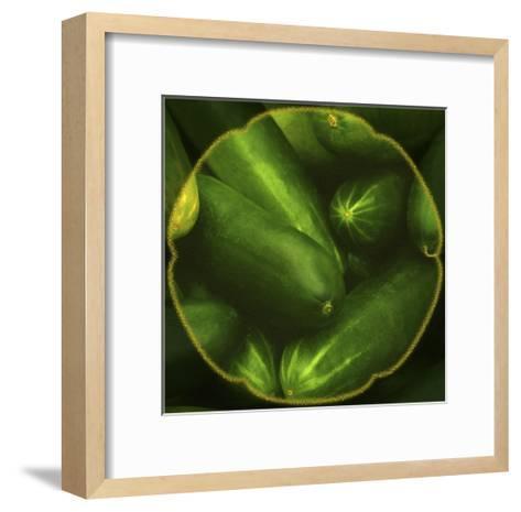 Cucumbers-Harold Silverman-Framed Art Print