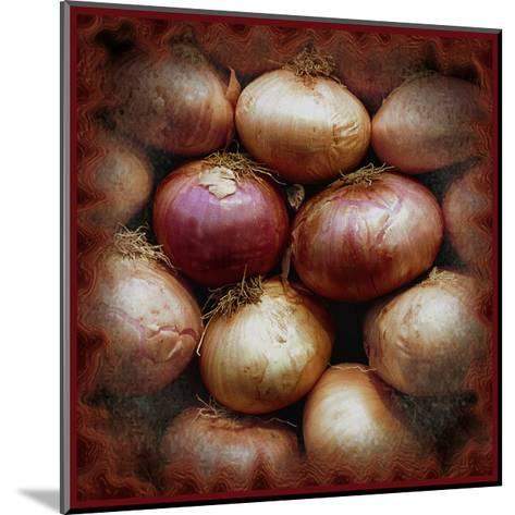 Onions-Harold Silverman-Mounted Giclee Print
