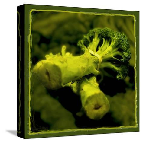 Broccoli-Harold Silverman-Stretched Canvas Print