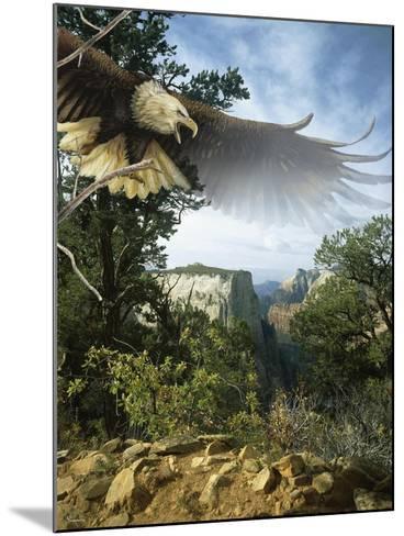 Above the Rim-Gordon Semmens-Mounted Giclee Print