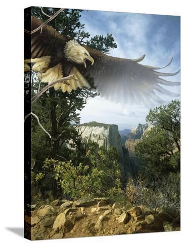 Above the Rim-Gordon Semmens-Stretched Canvas Print