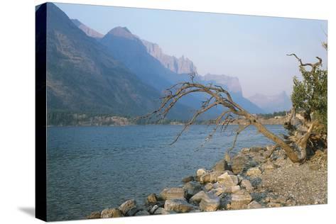 Glacier National Park 13-Gordon Semmens-Stretched Canvas Print