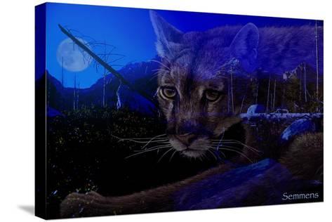 Silent Night 2-Gordon Semmens-Stretched Canvas Print
