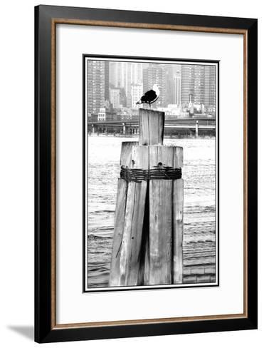 Early Bird Catches the Light-Harold Silverman-Framed Art Print