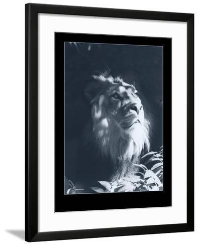 Lion-Gordon Semmens-Framed Art Print