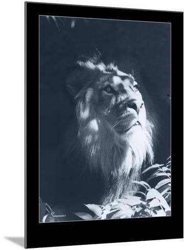 Lion-Gordon Semmens-Mounted Giclee Print