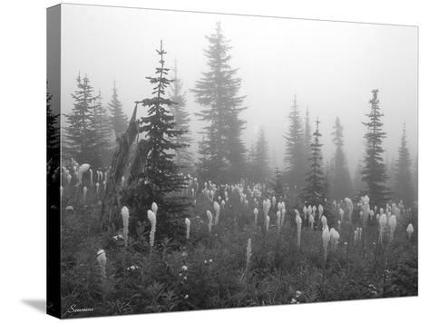 Glacier 7-Gordon Semmens-Stretched Canvas Print