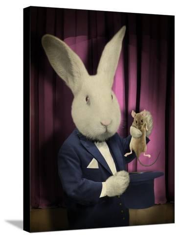 Rabbit Magician-J Hovenstine Studios-Stretched Canvas Print