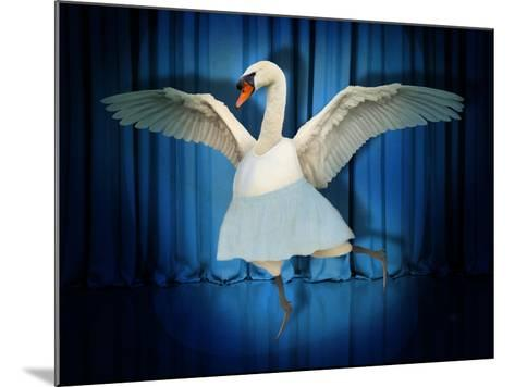 Swan Lake-J Hovenstine Studios-Mounted Giclee Print