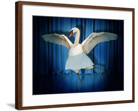 Swan Lake-J Hovenstine Studios-Framed Art Print
