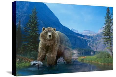 Walk on the Wild Side-Gordon Semmens-Stretched Canvas Print