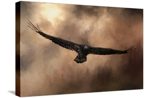 Juvenile Bald Eagle in the Sepia Sky-Jai Johnson-Stretched Canvas Print