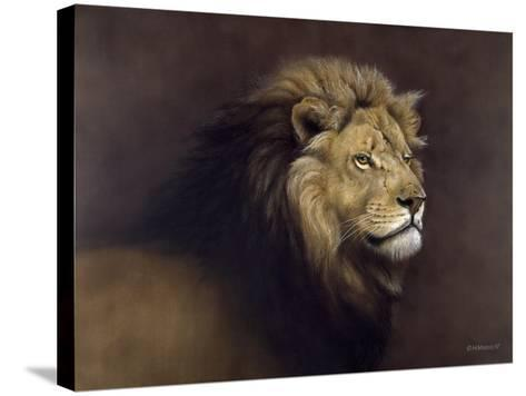 Lion Male-Harro Maass-Stretched Canvas Print