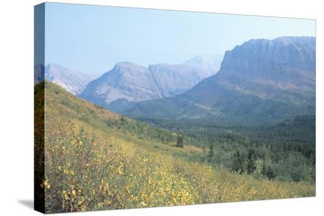 Glacier 8A-Gordon Semmens-Stretched Canvas Print