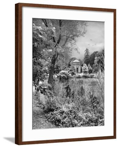 Woodlawn Dreaming-Jessica Jenney-Framed Art Print