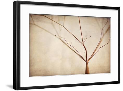 Desert Afterlife 1A-Jessica Rogers-Framed Art Print