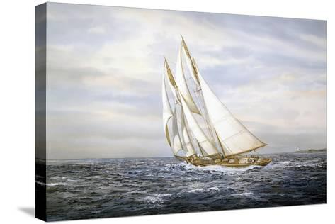 Going Fishing-Jack Wemp-Stretched Canvas Print