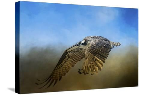 Osprey over Pickwick-Jai Johnson-Stretched Canvas Print