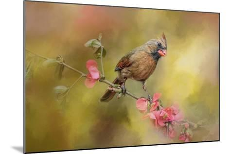 Spring Cardinal 1-Jai Johnson-Mounted Giclee Print