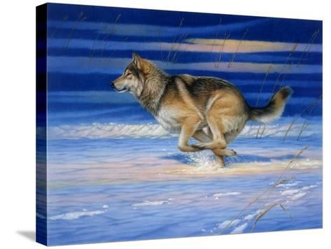 Snow Beat-Joh Naito-Stretched Canvas Print