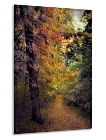 Autumn Trail-Jessica Jenney-Metal Print
