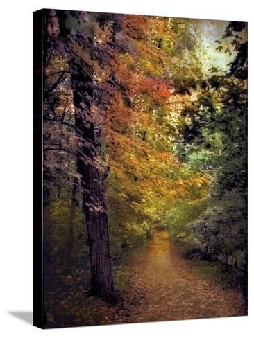 Autumn Trail-Jessica Jenney-Stretched Canvas Print