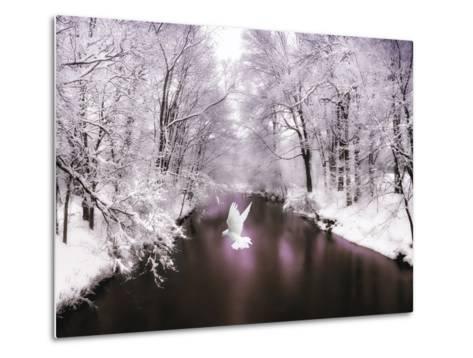 Peace on Earth-Jessica Jenney-Metal Print
