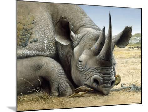 Black Rhino-Harro Maass-Mounted Giclee Print