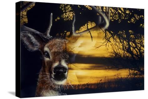 Staying Safe-Gordon Semmens-Stretched Canvas Print
