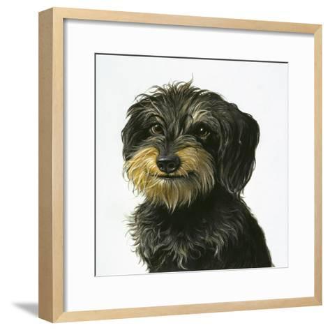 Dog-Harro Maass-Framed Art Print