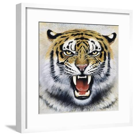 Tiger-Harro Maass-Framed Art Print