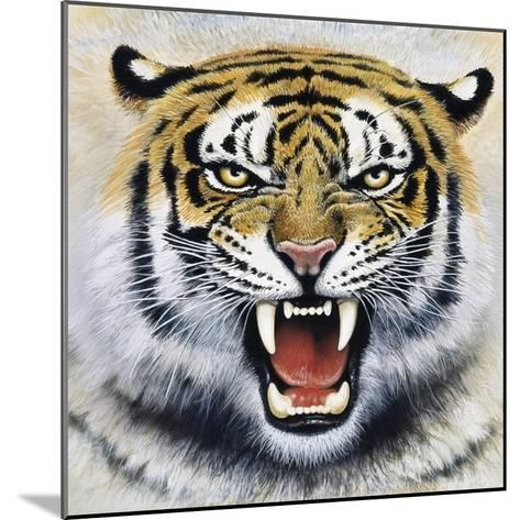 Tiger-Harro Maass-Mounted Giclee Print