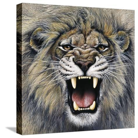 Lion-Harro Maass-Stretched Canvas Print