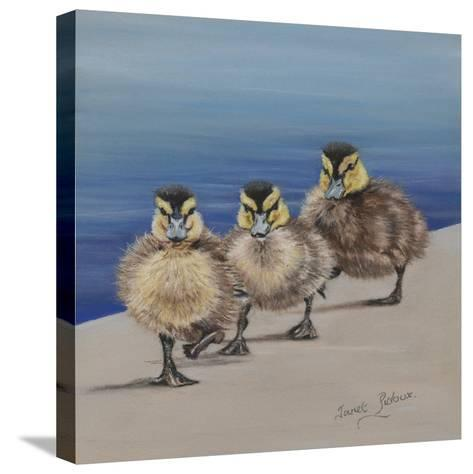 Left Right, Left Right-Janet Pidoux-Stretched Canvas Print