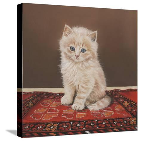 Fluffy-Janet Pidoux-Stretched Canvas Print