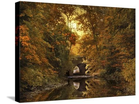 Reflections on October-Jessica Jenney-Stretched Canvas Print