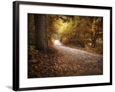 Enlightened Path-Jessica Jenney-Framed Art Print