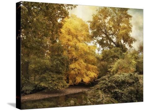Autumn Creek-Jessica Jenney-Stretched Canvas Print