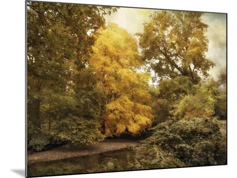 Autumn Creek-Jessica Jenney-Mounted Giclee Print