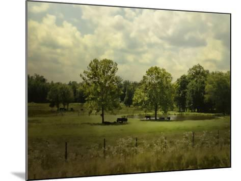 Cattle Pond in Summer-Jai Johnson-Mounted Giclee Print