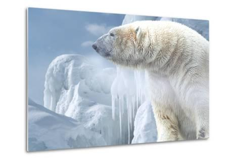 Arctic Frost-Gordon Semmens-Metal Print