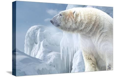 Arctic Frost-Gordon Semmens-Stretched Canvas Print